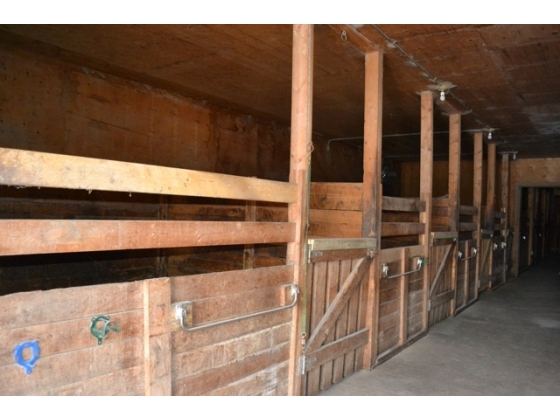 STALLS AND PENS