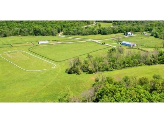 Great Secluded Horse Farm with 3 Barns, Trails and Training Track - 166 ACRES + Options