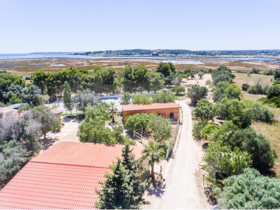 3 BEDROOM VILLA + 3 APARTMENTS, EQUESTRIAN FACILITIES & SEA VIEWS