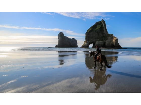 Cape Farewell Horse Treks - Golden Bay - New Zealand