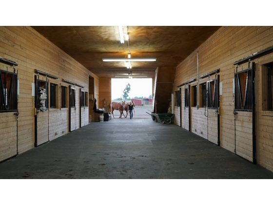 Interior of 10 Stall Barn