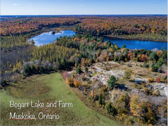 RARE OPPORTUNITY - 345 Acre Horse and Cattle Farm with Private Lake in Spectacular MUSKOKA