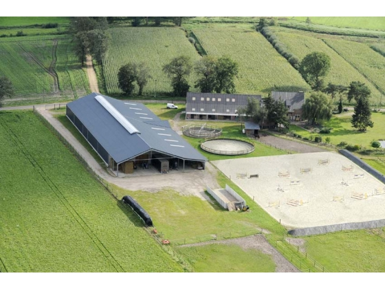 Professional Equestrian Property in Belgium for sale or rent