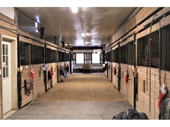 37 - 12 X 12 Stalls (Interlocking mats/auto waterers/lights)