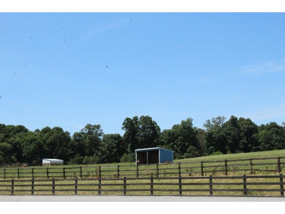 Multiple Paddocks/ 10 Run In Sheds/ 3 Board Oak Fencing/