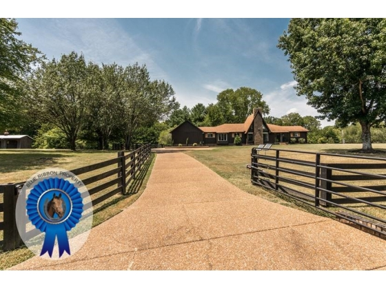 Awesome Mini Farm in Popular Lake Colonial Community Arrington TN
