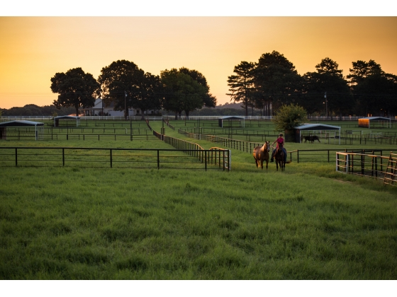 Garden Valley Horse Ranch, Lindale, Texas - A Heavenly Place!