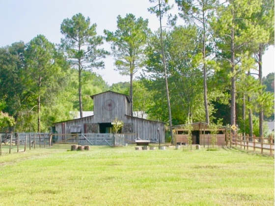 Idyllic Louisiana Horse Farm