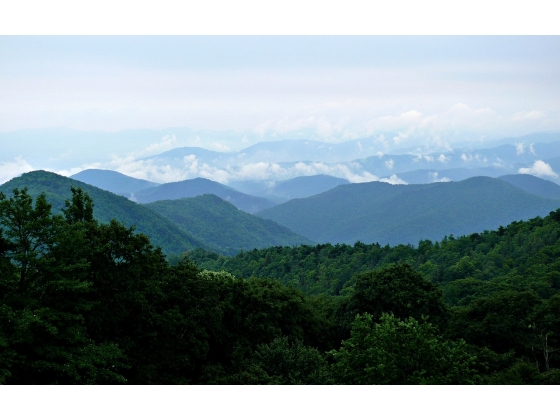 ABSOLUTE AUCTION 44± Acres offered in 3 Lots in the Smoky Mountains