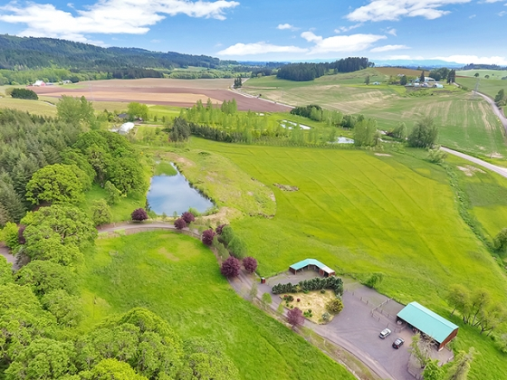 Quintessential Willamette Valley Equine and Vineyard Estate