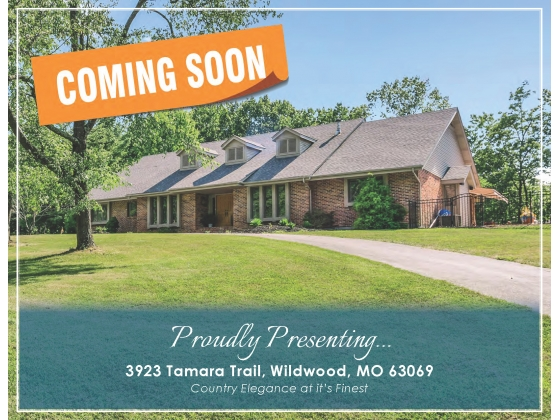 COMING MARCH 2020   Beautiful St. Louis County Missouri Executive Ranch  www.3923tamaratrail.com