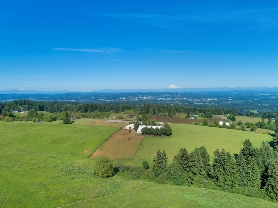 EQUESTRIAN FACILITY WITH CUSTOM BUILD OPPORTUNITY, VIEWS THAT WON'T DISAPPOINT!