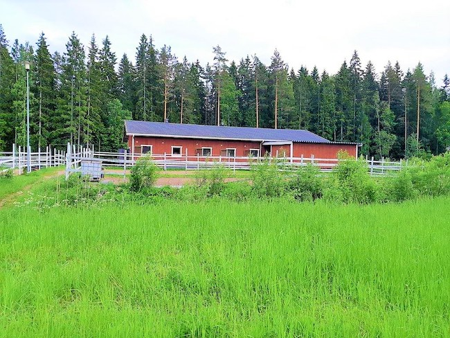 Multi Family Craftsman House with Horse Ranch in Pori, Finland