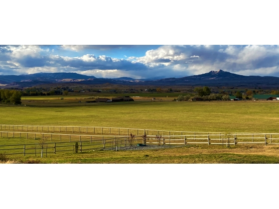 Equestrian Estate For Sale. Cody, Wyoming
