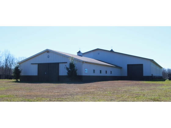 Horse Farms For Sale