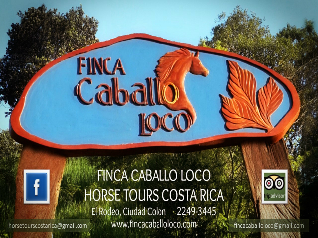 Horse Heaven in Costa Rica, Unparalleled Views, Urban Convenience, Trails, 8 Stalls, with Optional Turn-key Tour Business