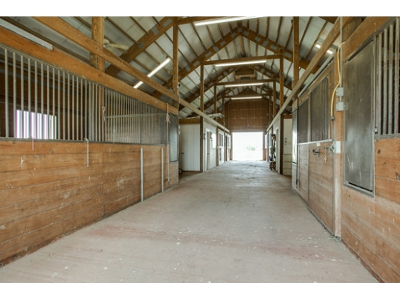One foaling stall, wash bay, auto waterers, fly spray, tack and feed rooms