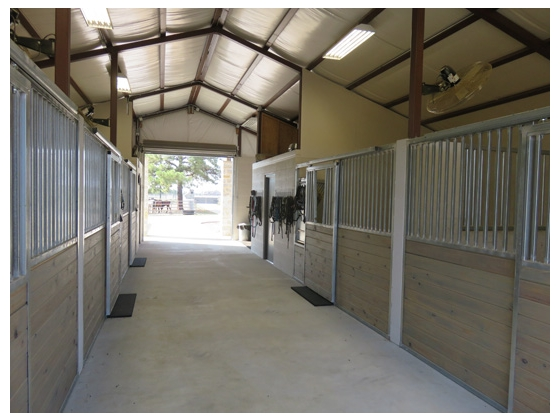 Stalls with auto-waterers, mats and fly spray