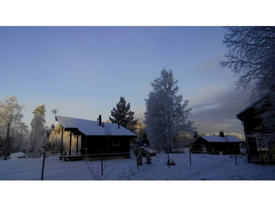 Small horse property in Finland