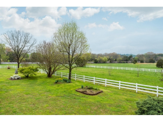 Beautiful Tennesse Equestrian Estate